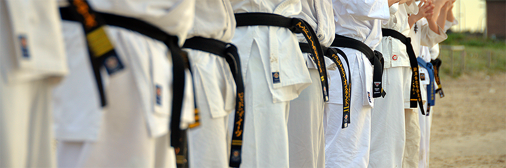 Row of karateka with black belts and fists